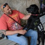 A Beginners Guide To Life With A Service Dog