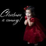 Christmas Is Coming Quotes