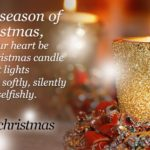 15 Christmas Lights Quotes