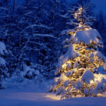 Christmas Snow Wallpapers