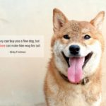 19 Cute And Sweet Dog Quotes