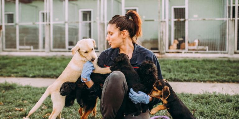 WHAT IS A DOG BEHAVIORIST AND DOES MY DOG NEED TO SEE A BEHAVIORIST?