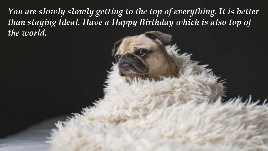 Funny Birthday Messages For Friend