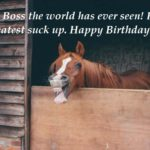 20 Funny Birthday Wishes For Boss