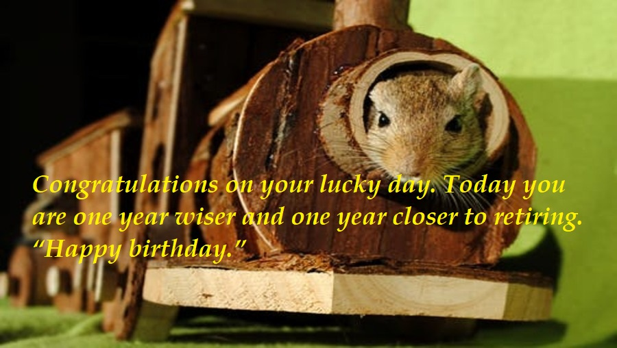 17 Funny Birthday Wishes for Colleagues