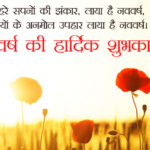 21 Beautiful Happy New Year Message In Hindi