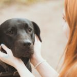 Helping Your Fearful & Frightened Dog
