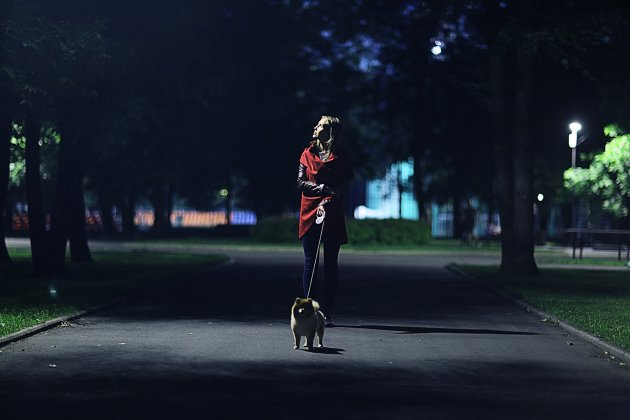 How to Safely Walk Your Dog at Night