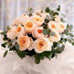 Beautiful Juliet Rose