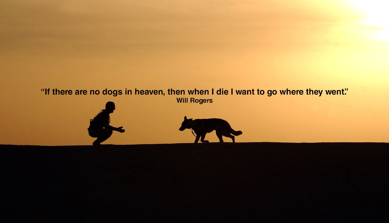 Quotes About Dogs Tumblr
