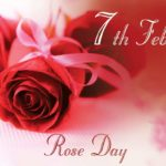 Rose Day 7th February