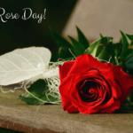 Cute Rose Day Photos