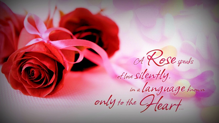 14 Romantic Rose Day Quotes
