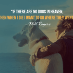 15 Sad Quotes On Dog Death