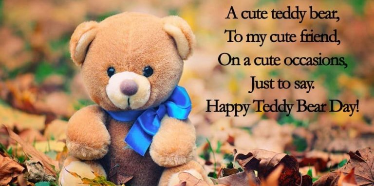 17 Best Teddy Bear Quotes