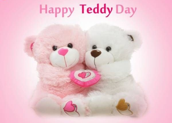 Teddy Day Cute Photos