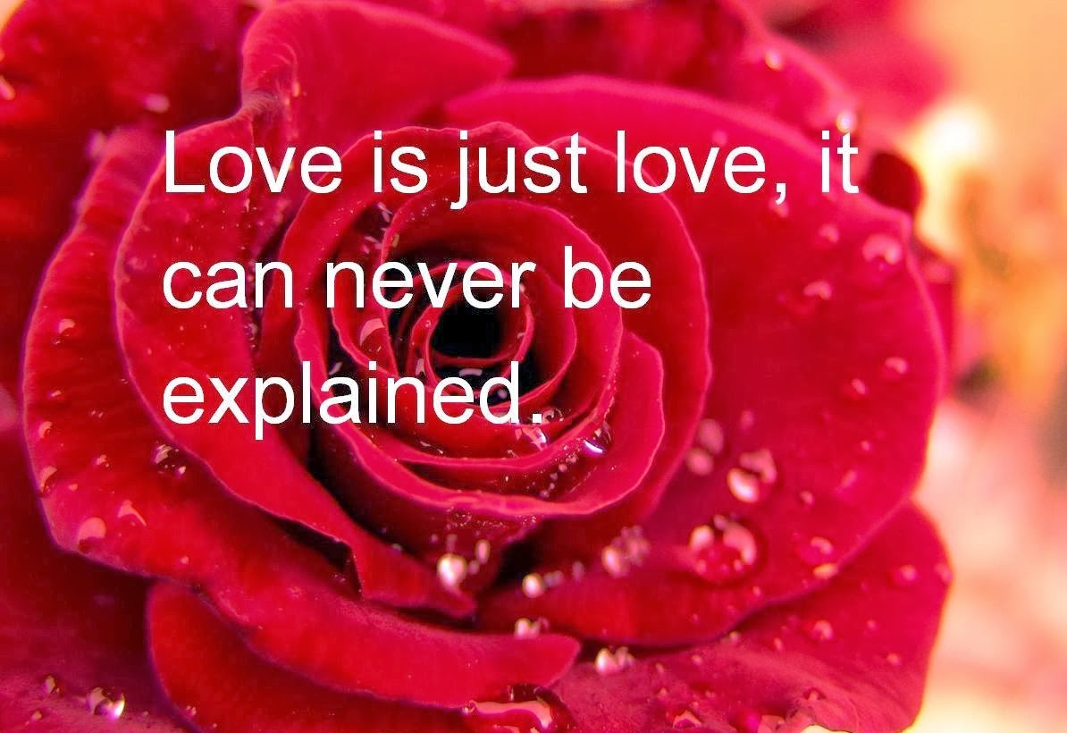 9 Beautiful Valentines Day Quotes For Friends – VitalCute