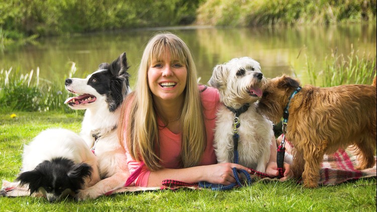 Ways to Become a Dog Trainer – VitalCute
