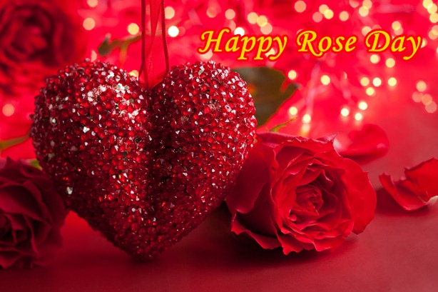 World Rose Day: The First Day of Valentine
